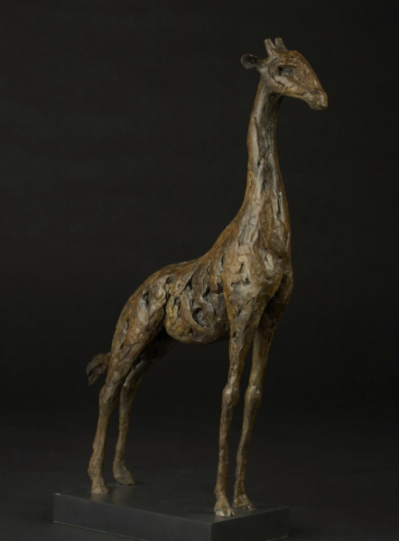 Closeup photo of Giraffe Bronze