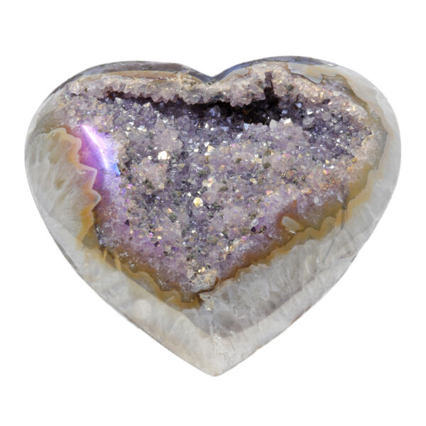 Closeup photo of Iridescent Heart -Rose de France Druze with Stalactite Flowers