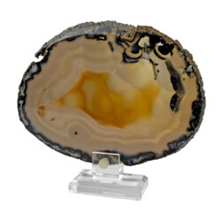 Closeup photo of Agate Slice On Acrylic Screw-in Stand With Dark Edge And Lavendar Botrioydal Patterns