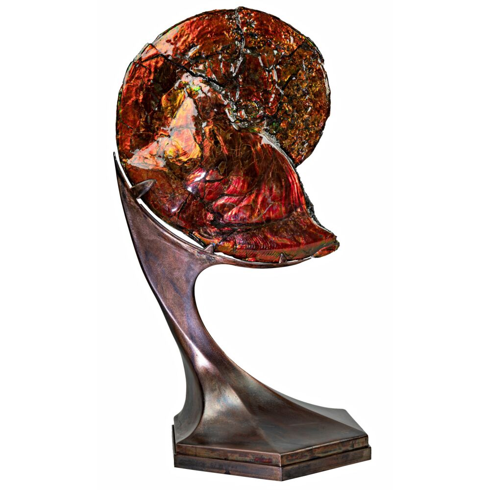 Image 2 for Ammonite And Ammolite Fossil In Custom Spinning Futuristic Stand