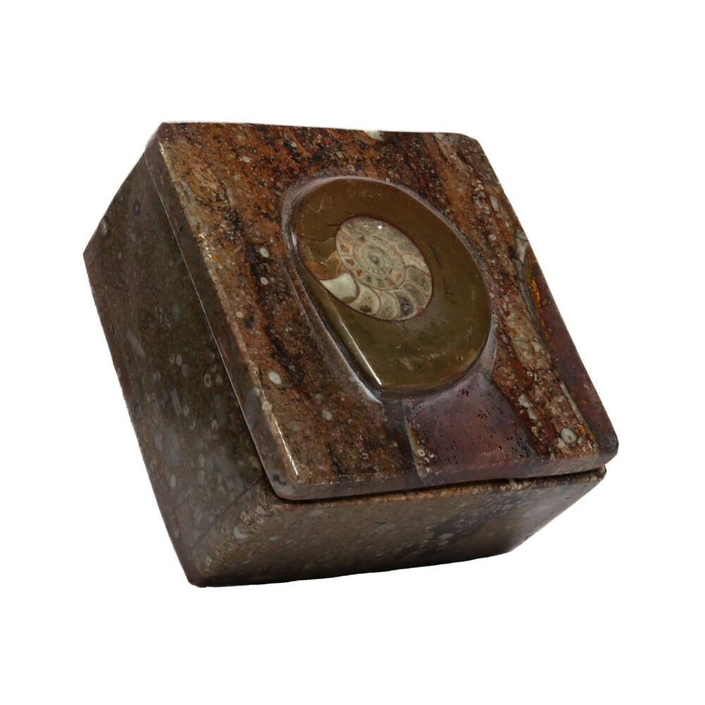"Ammonite Fossil Box 3.5"""