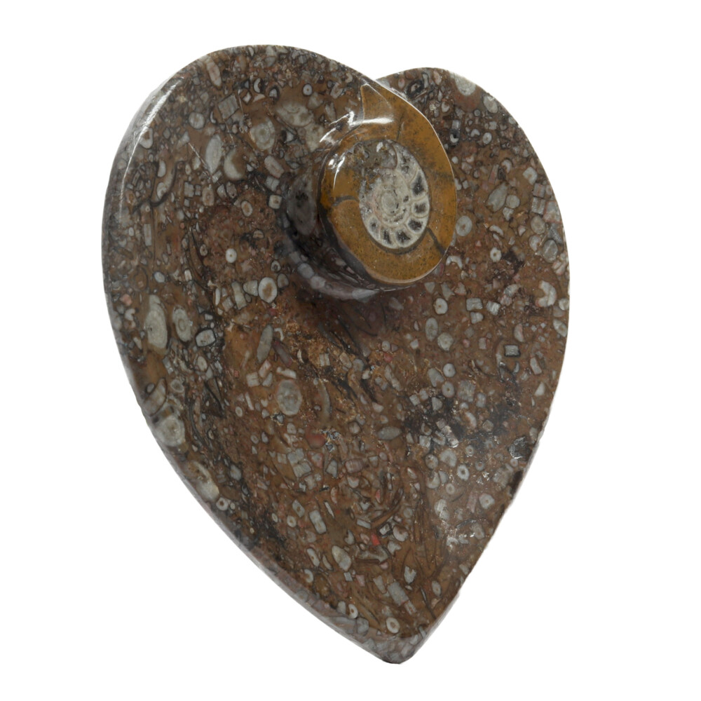 Image 2 for Ammonite Fossil Heart Dish