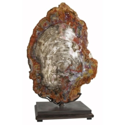 Closeup photo of Arizona Petrified Wood Contour End Cut On Custom Spinning Stand