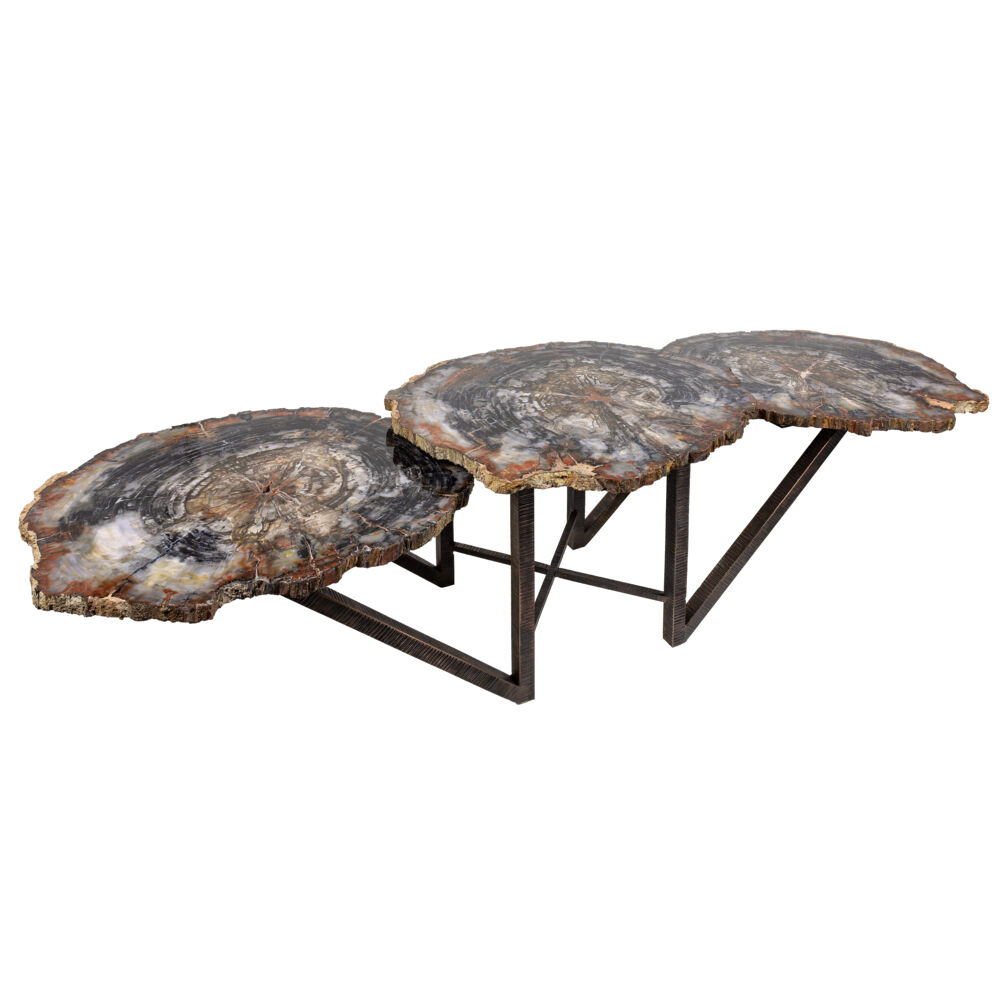 Arizona Petrified Wood Trio Slice Coffee Table With Hand Forged Base