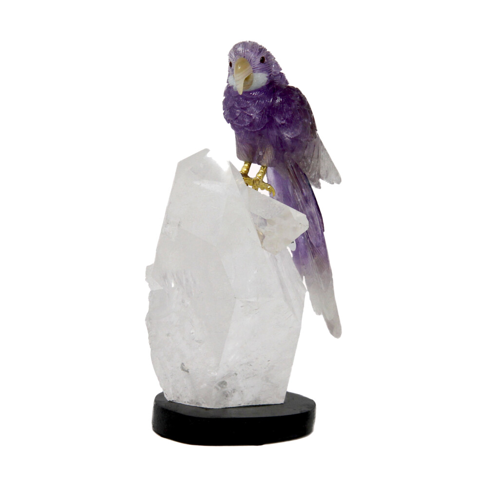 Image 2 for Amethyst Macaw On Quartz Point Cluster #D028