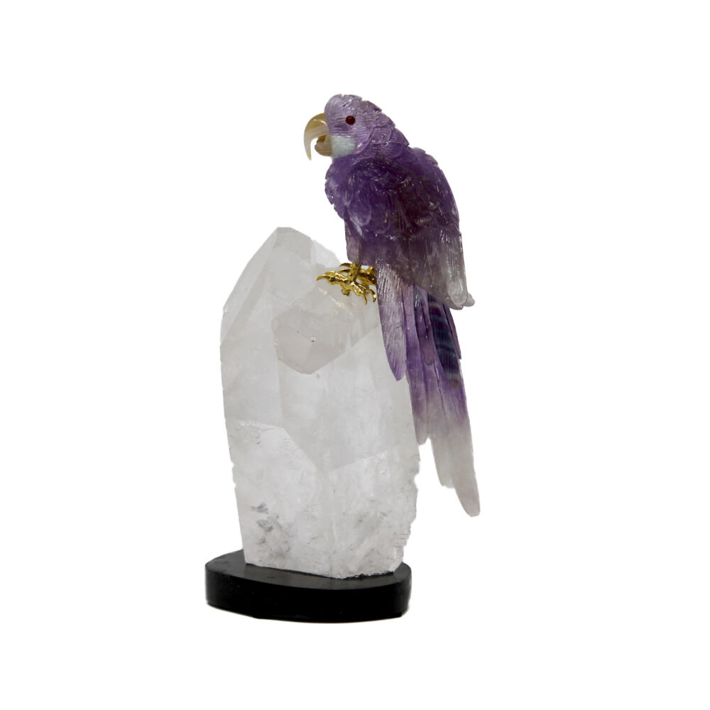 Amethyst Macaw On Quartz Point Cluster #D028