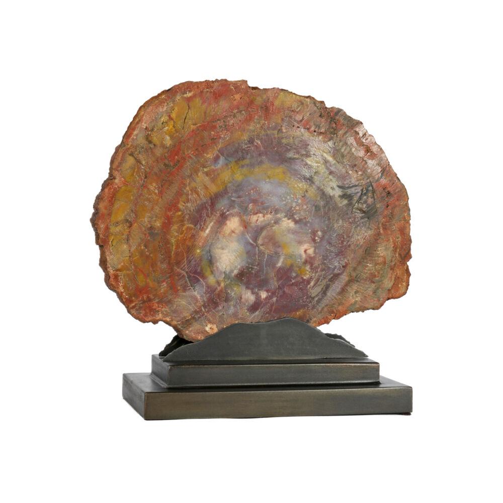 Image 2 for Arizona Petrified Wood Slice On Custom Mountain Stand