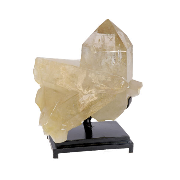 Closeup photo of Natural Citrine Point Cluster On Black Fitted Stand