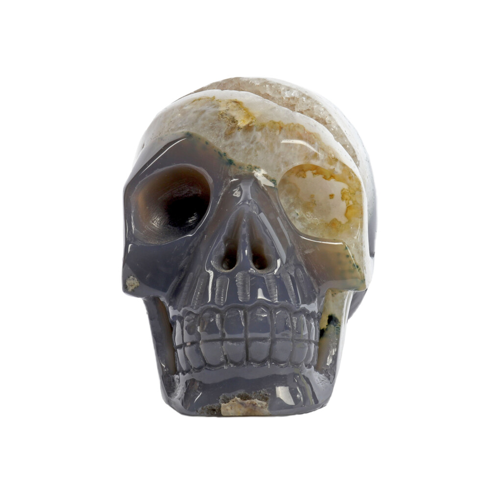 Agate Geode Skull Carving With Druze