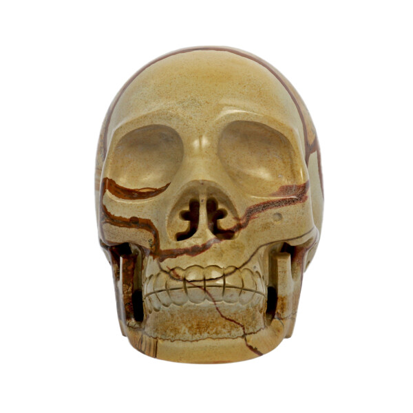 Closeup photo of Picture Jasper Skull