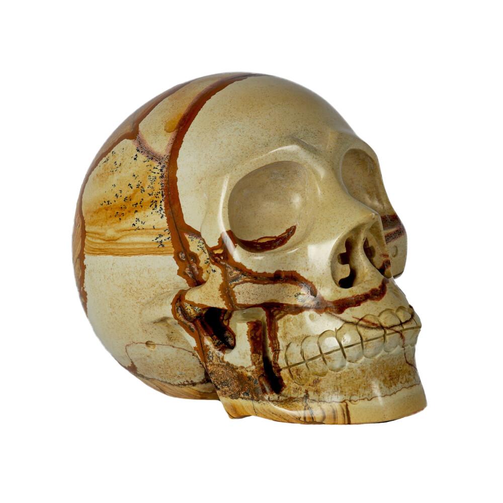 Image 2 for Picture Jasper Skull