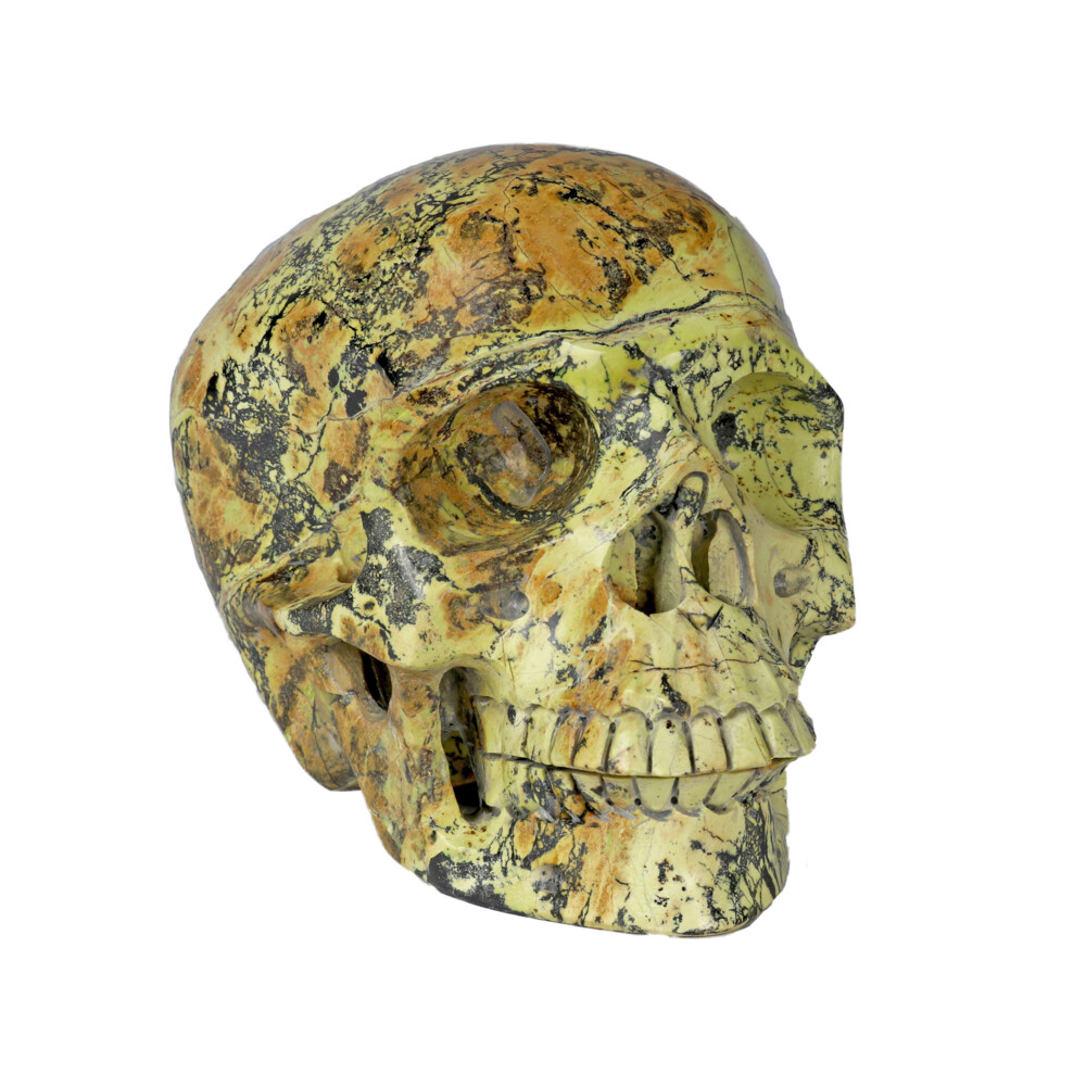 Image 2 for Yellow Turquoise Skull Medium
