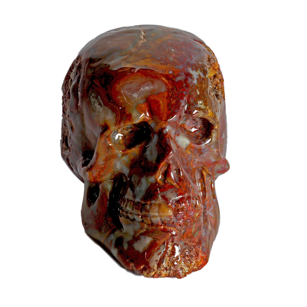 Image 2 for Crazy Lace Agate Skull Small
