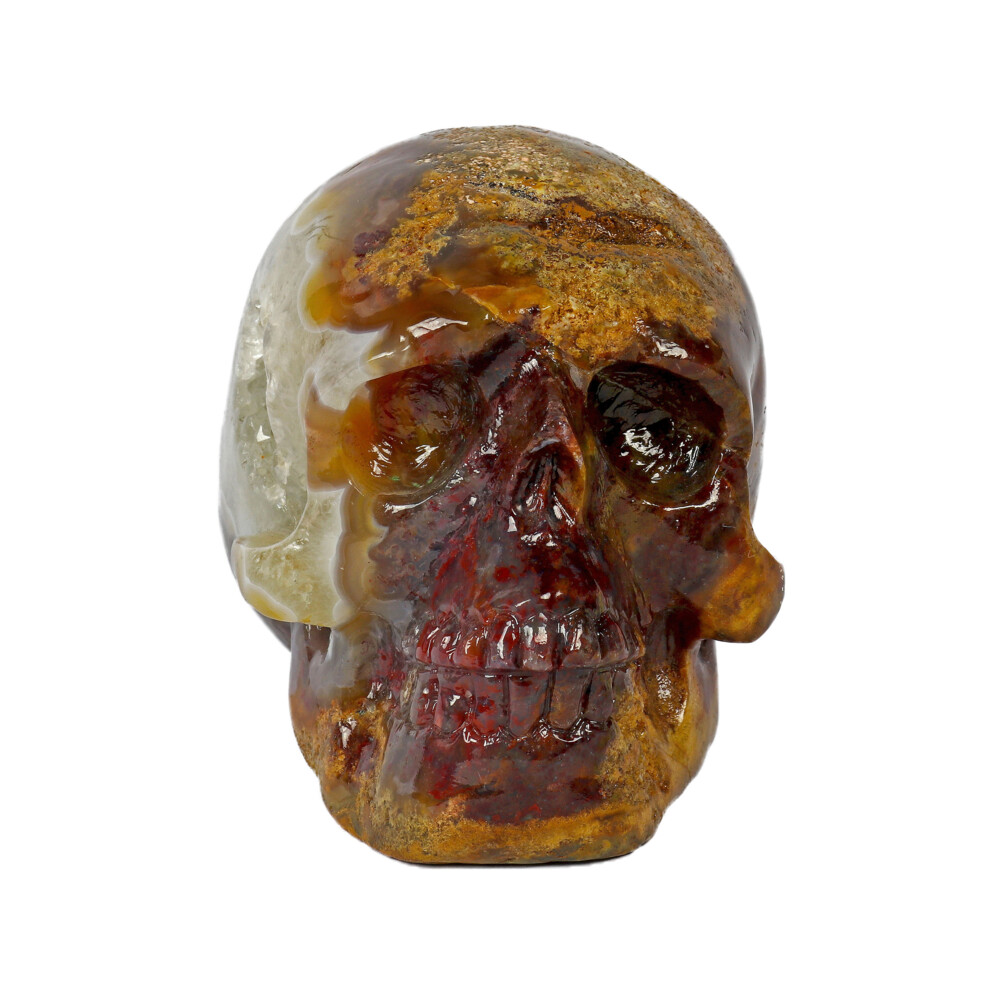 Crazy Lace Agate Skull Medium