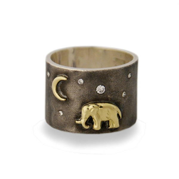 Closeup photo of Silver Tsavo Nights Ring