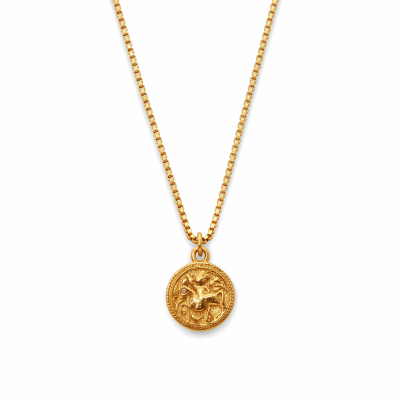 Closeup photo of Coin Charm Necklace