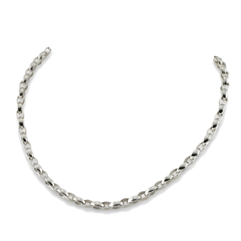 Closeup photo of Oval Chain Link Necklace