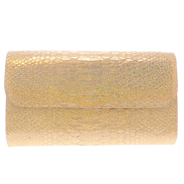 Closeup photo of Iridescent Gold Python Clutch
