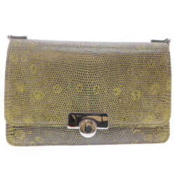 Closeup photo of Olive Lizard Chain Bag