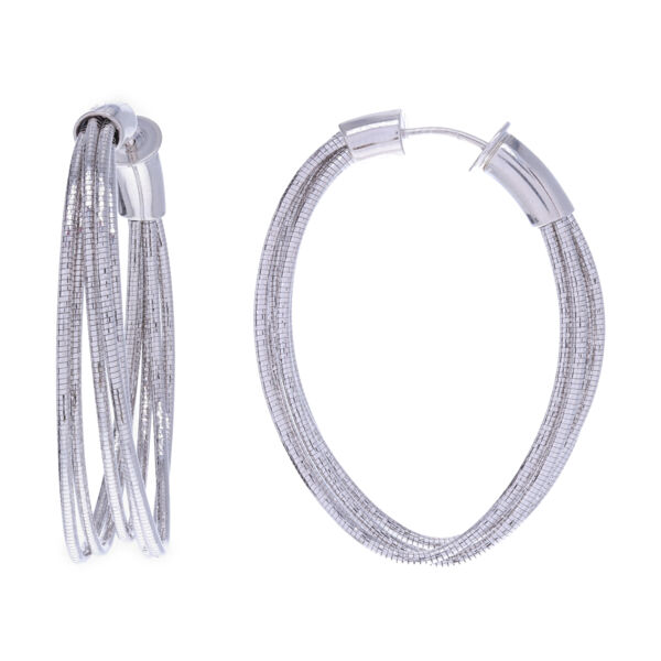 Closeup photo of Large Oval Hoop Earrings