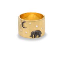 Closeup photo of Gold Tsavo Nights Ring
