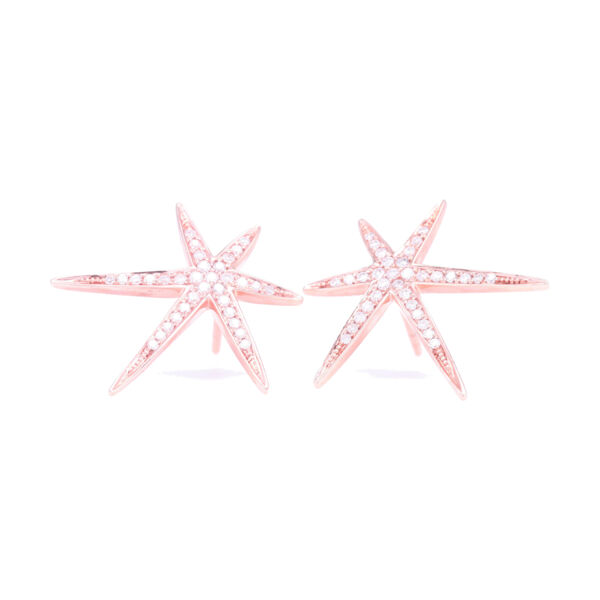 Closeup photo of Large Abstract Star Studs