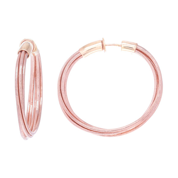 Closeup photo of Small Hoop Earrings