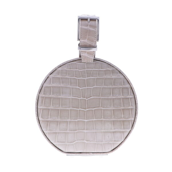 Closeup photo of Beige Alligator Hat Box Chain Bag