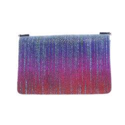 Closeup photo of Stingray Chain Bag Rainbow